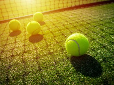 Statutory Inspection and Test: tennis