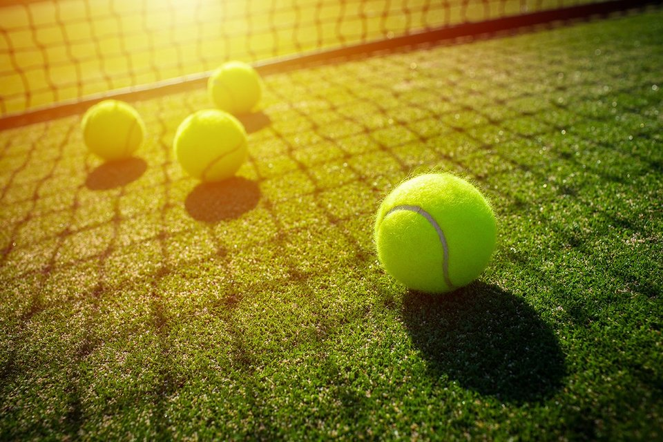 Four tennis balls on a green lawn behind the net. Sun is shining onto the lawn